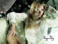 amber-tigerlily